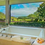 p_78-Princeville-Vacations.halenene.bath.oceanview