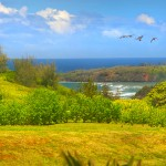 p_78-Princeville-Vacations.halenene.view
