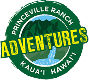 Princeville-Vacations.Adventures.logo